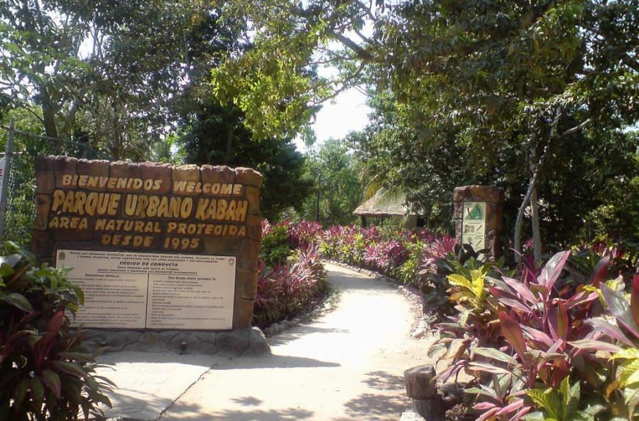<p>El Parque Urbano Kabah es una pequeña área natural en el centro de la ciudad</p>