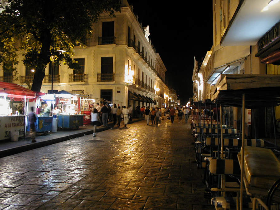 <p>Night view of the historic center of Merida</p>