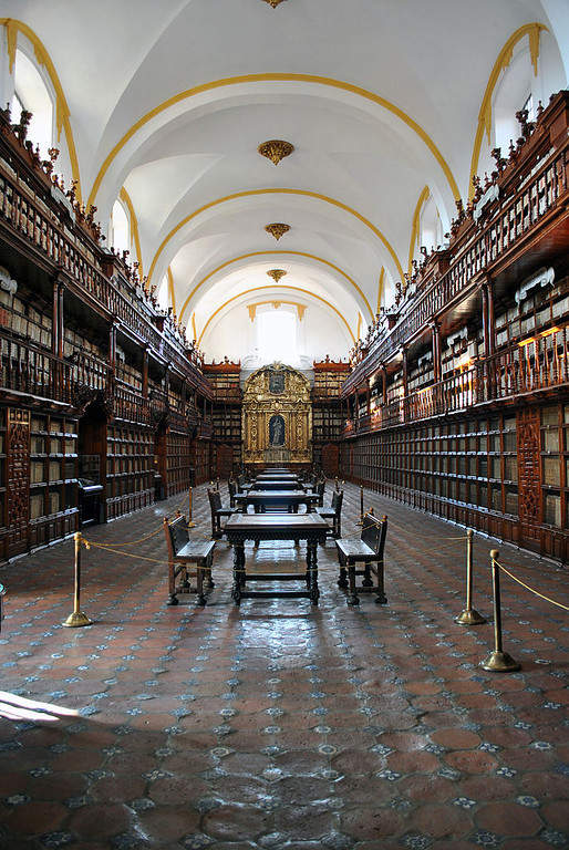 <p>The Palafoxiana Library is part of the Memory of the World Program by UNESCO</p>