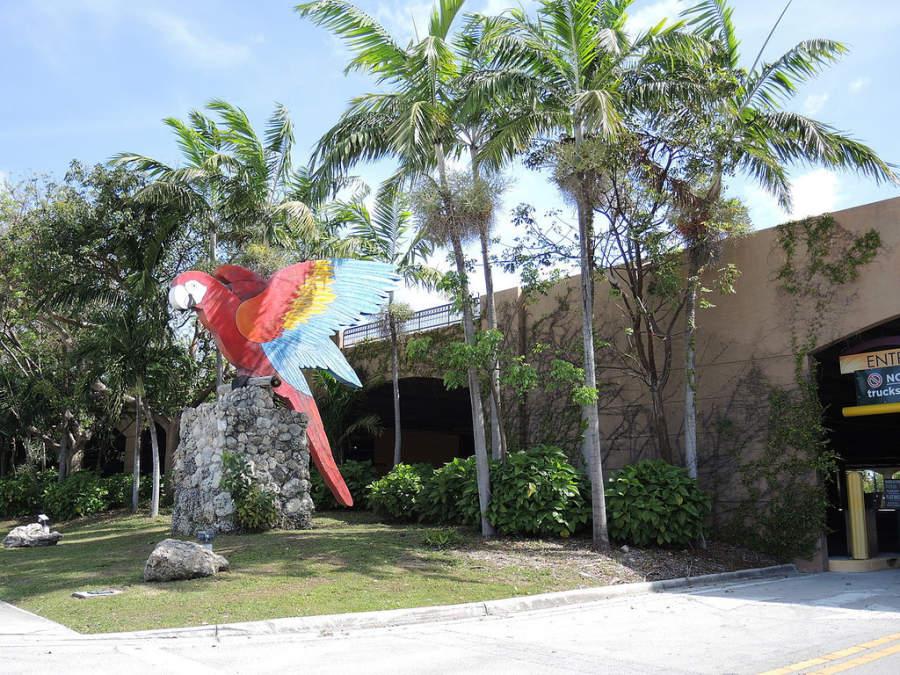 <p>Entrada al zoológico Jungle Island en Miami</p>