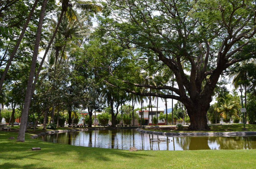 <p>Hidalgo Park in the city of Colima</p>