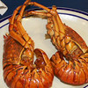 <p>Lobster</p>,Zihuatanejo, Mexico