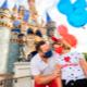 Walt Disney World: Ticket básico