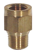 "Ray Porous Snubber 1/4"" NPT Brass (Light Oil, Water)"