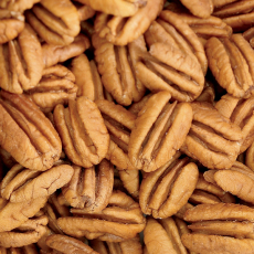 Fancy Mammoth Pecan Halves