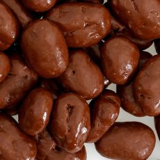 Milk Chocolate Pecan Halves