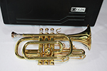 F.E.  Olds Cornet, Old Brass Lacquer Finish - NL5AZ