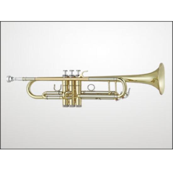 Antigua Intermediate Trumpet - Multiple Options!