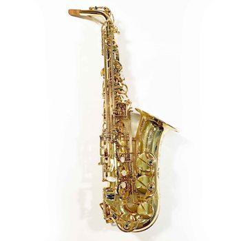 Theo Wanne SHAKTI Alto Saxophone