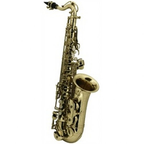 Roy Benson Children's Alto Saxophone