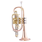 John Packer Smith-Watkins Standard Cornet - Multiple Finishes