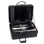 Pro Tec Combo Trumpet/Flugel Pro Pac Case