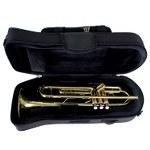 Pro Tec Travel Light Trumpet Pro Pac Case - Black