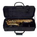 Alto Saxophone Cases
