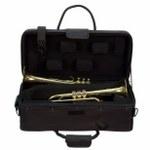 Pro Tec iPac Double Trumpet Case