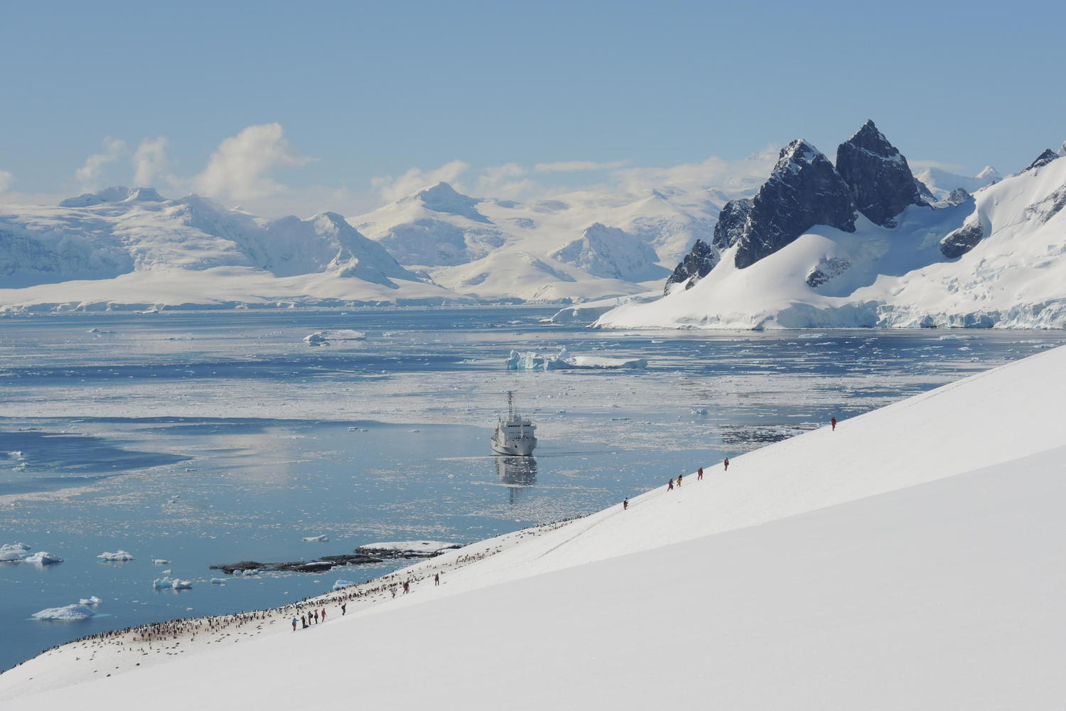 Hikers and penguins set off up hill as the Akademik Ioffe looks on from the bay