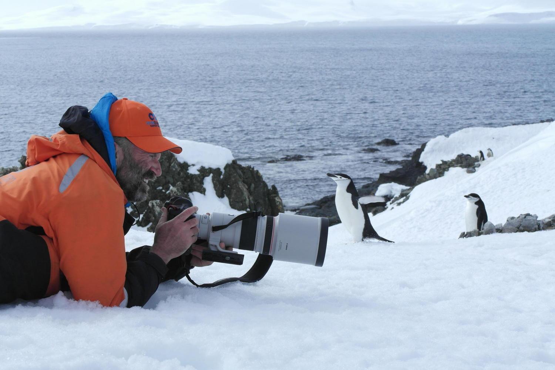 antarctica-half-moon-island-chinstraps-with-photographer