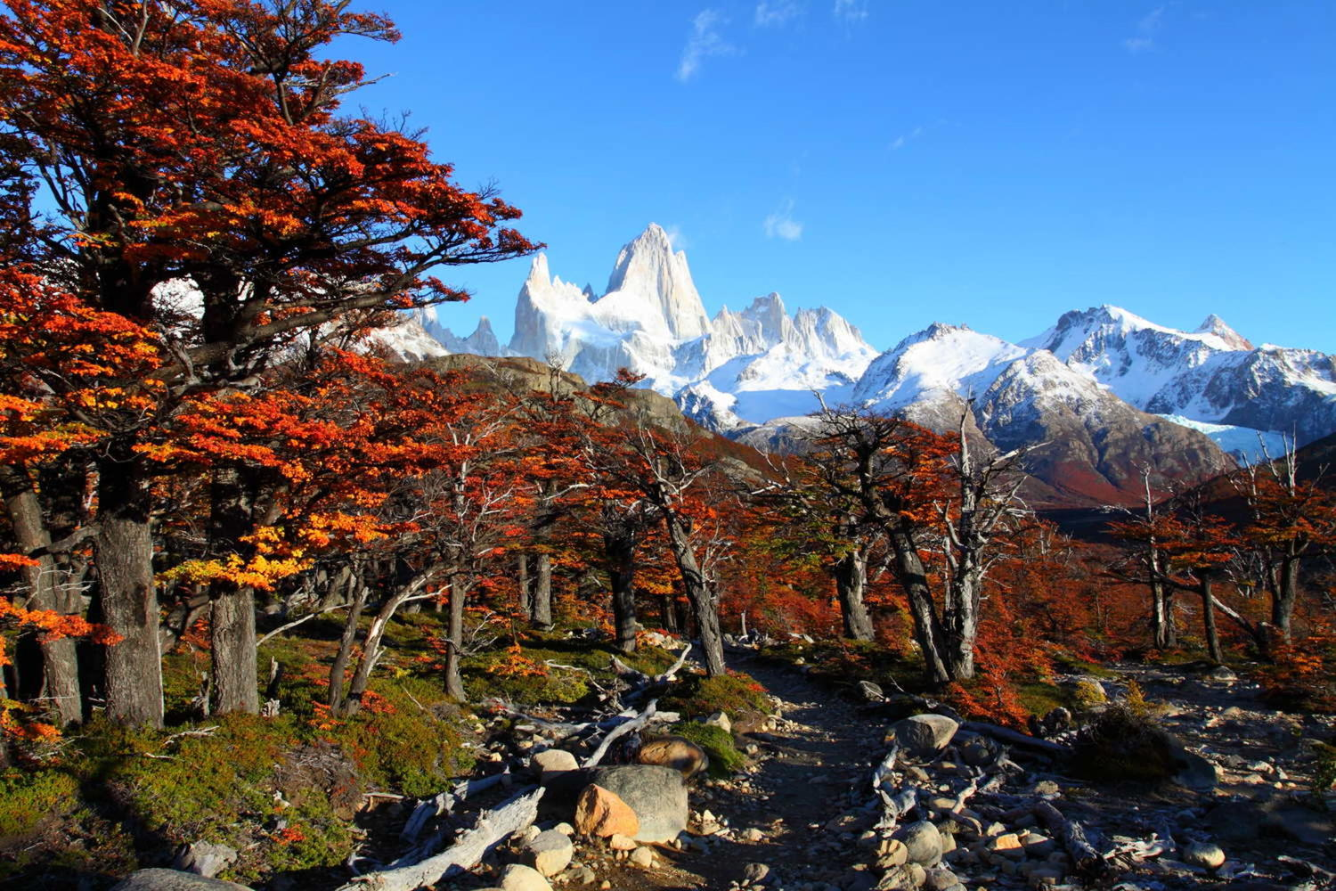 Beautiful nature landscape with Mt. Fitz Roy as seen in Los Glaciares National Park