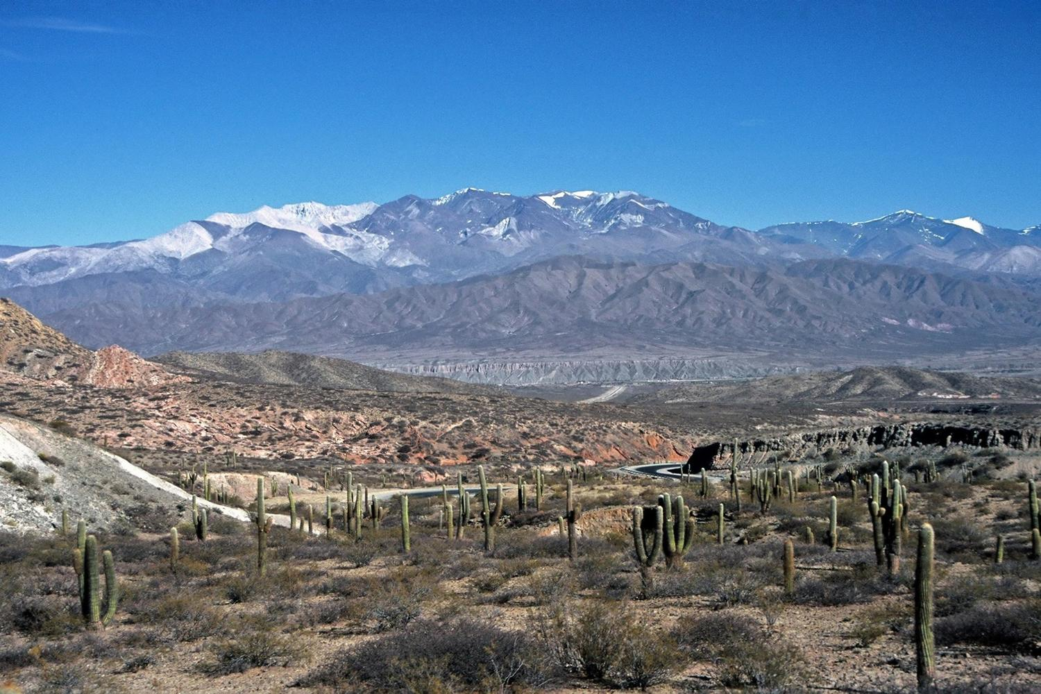 Los Cardones national park near Cachi in Argentina
