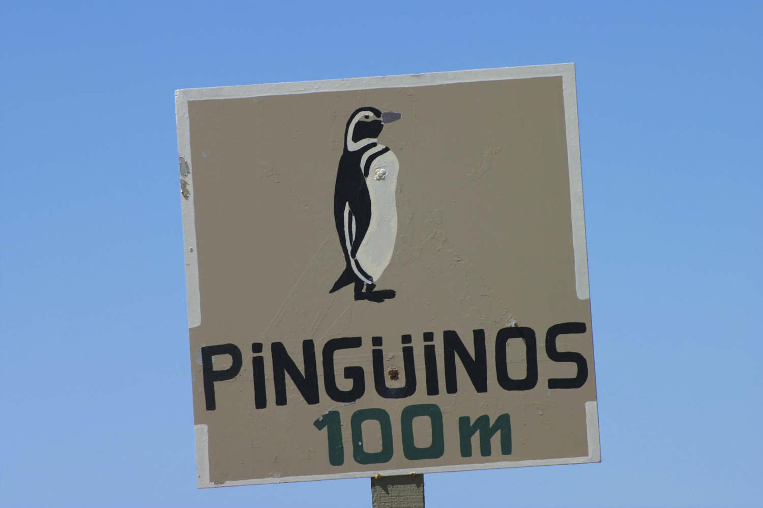Caution Penguins Crossing sign in Peninsula Valdes