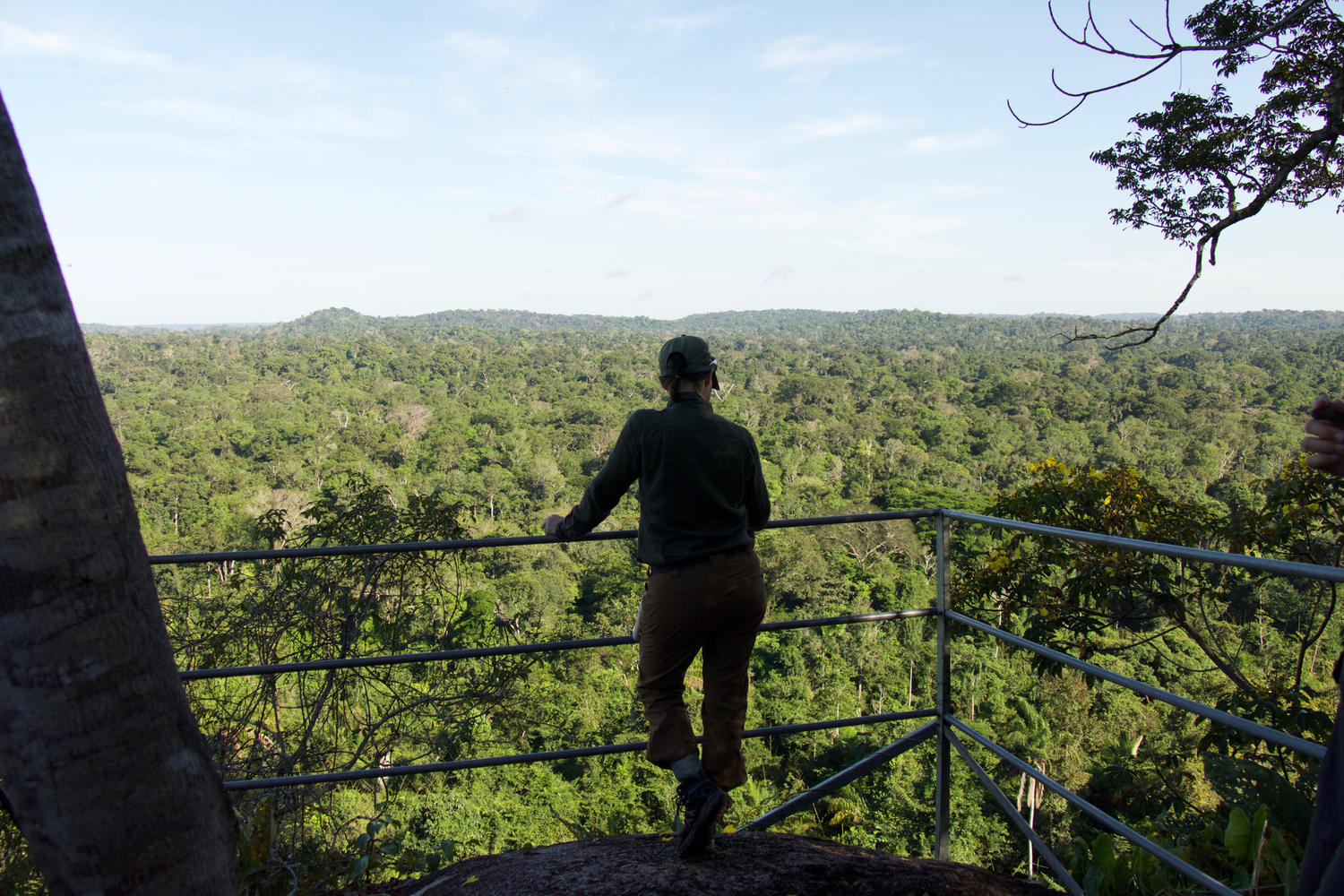 The viewpoint from Serra trail of Cristalino Reserve, Amazon
