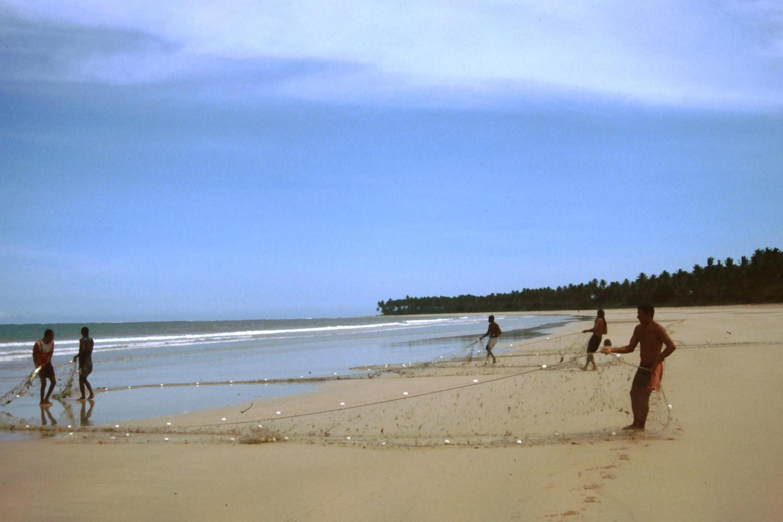 Hauling in the catch on Boipeba Island