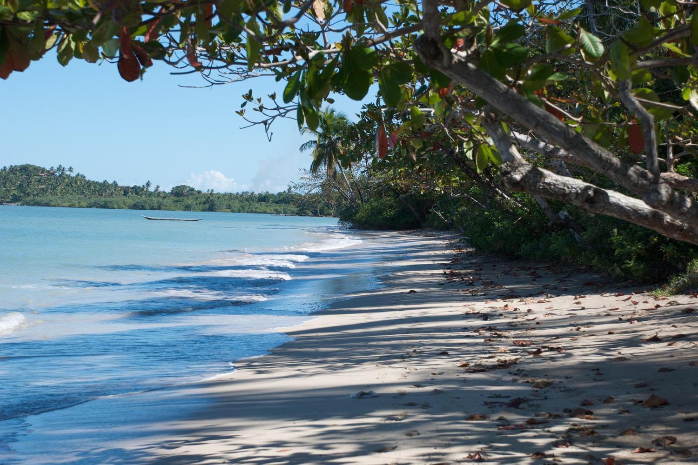 The palm fringed beaches of tropical Boipeba Island in Brazil
