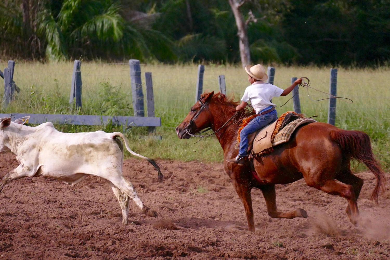 Young cowboy in action at Caiman Lodge, Pantanal