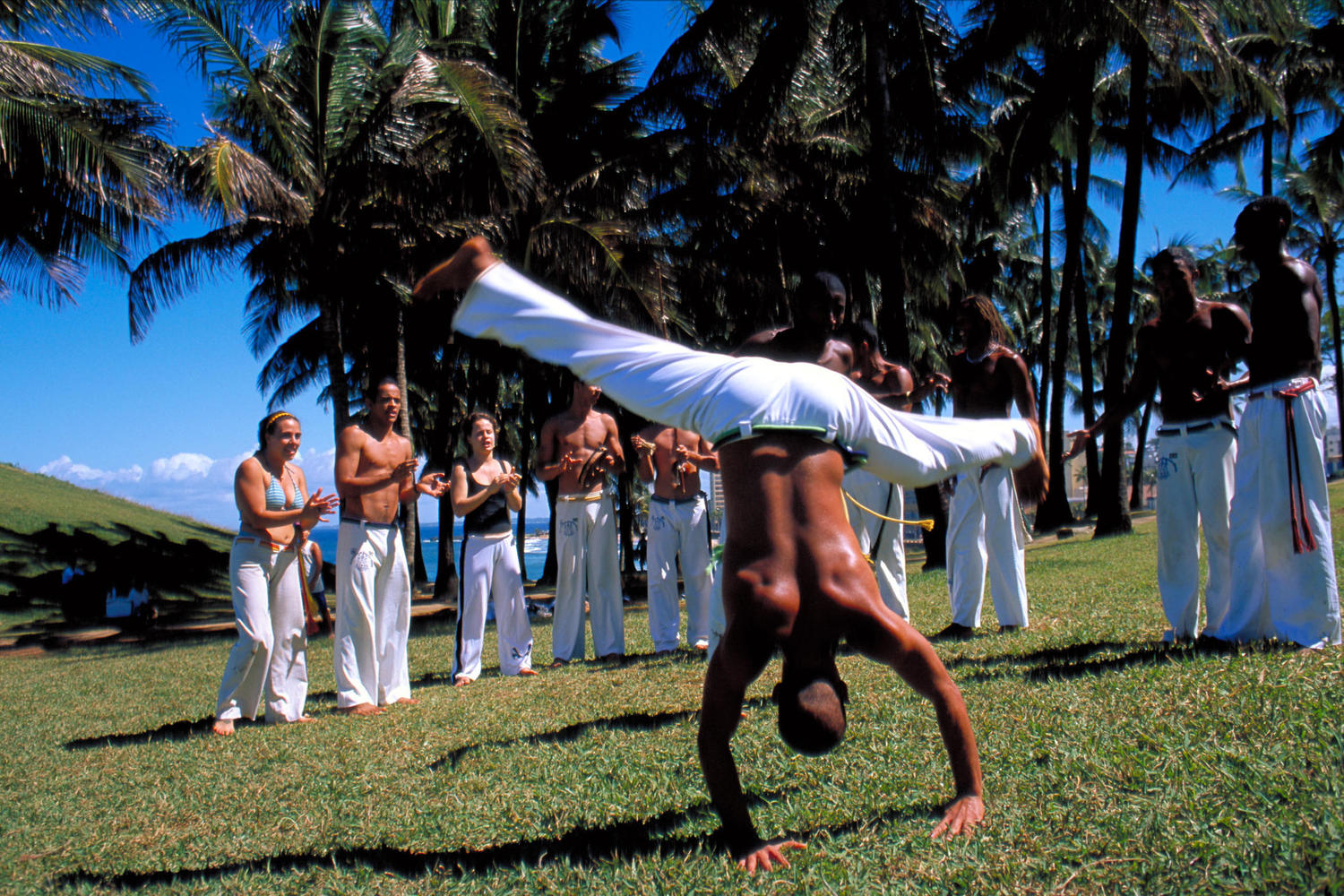 Capoeira is the mixed martial art and dance which is prolific to the culture of Salvador and Bahia