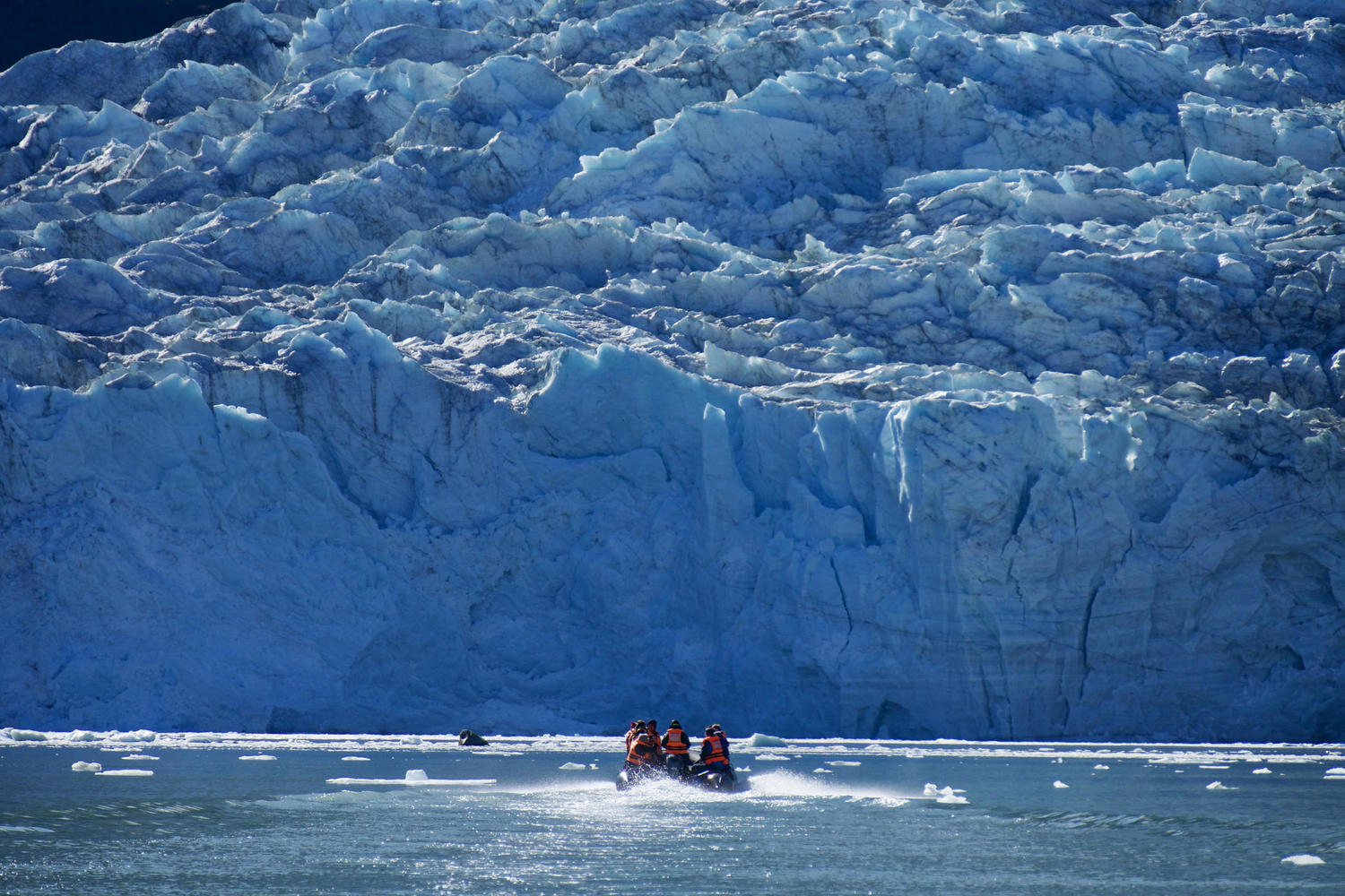 Zodiac approaching the Pia Glacier from the Australis Cruise