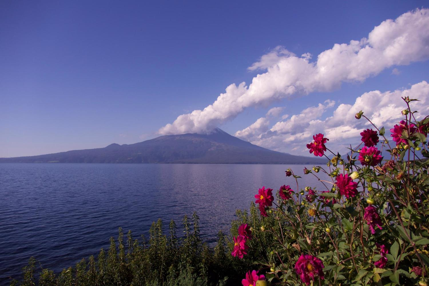 A beautiful day over Volcan Osorno in the Chilean Lake District