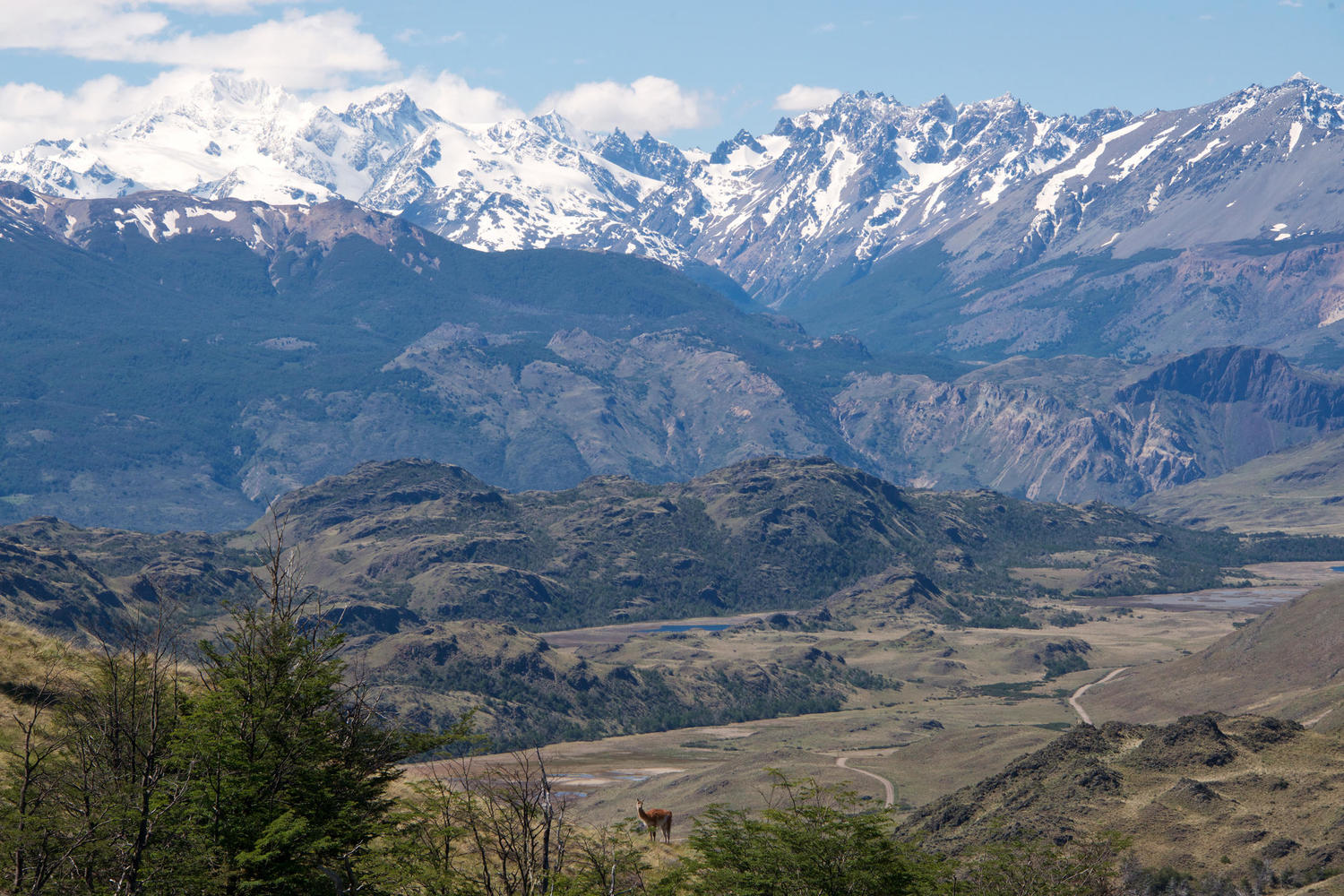 The snow-capped peaks of Parque Patagonia
