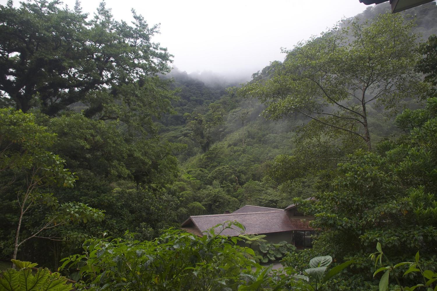 The el Silencio Lodge in the Bajos de Toro cloudforest of Costa Rica