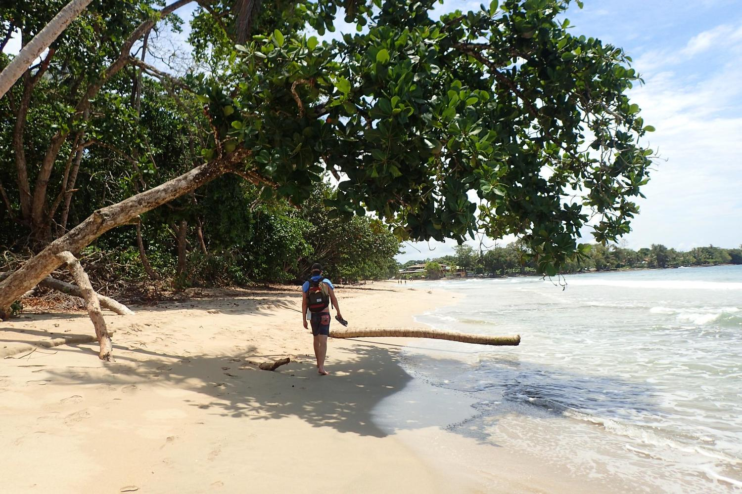 Walking the beaches of Cahuita