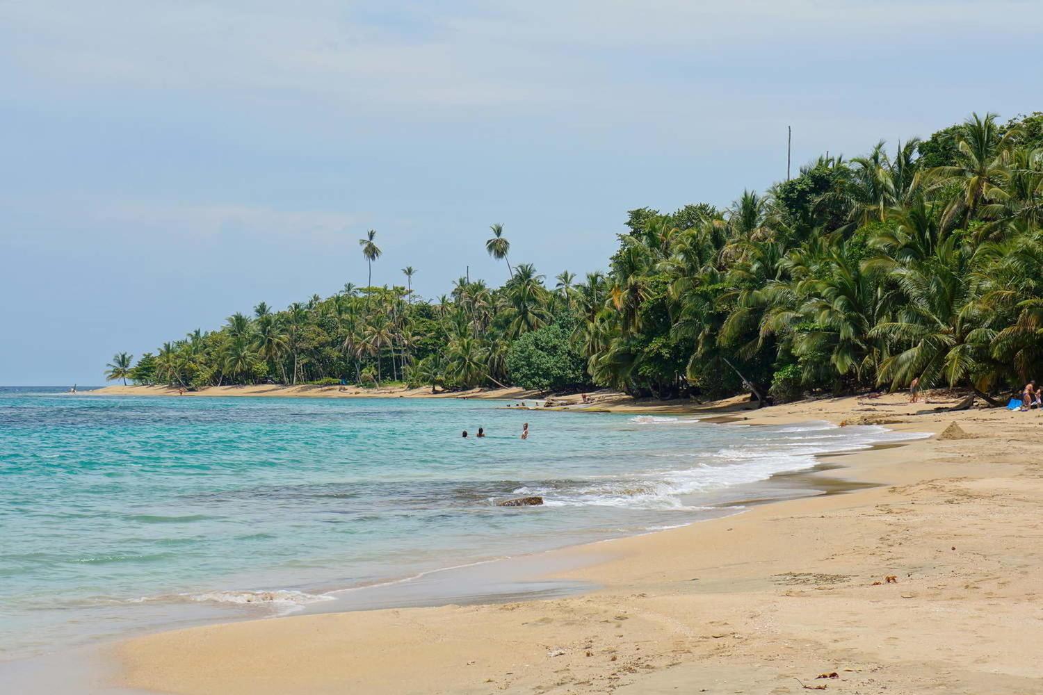 Beach with beautiful tropical vegetation on the Caribbean coast of Costa Rica's Punta Uva