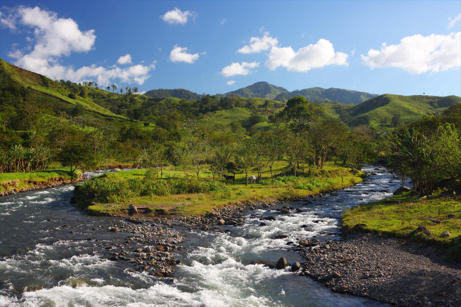 Beautiful mountain landscape with a river in Monteverde