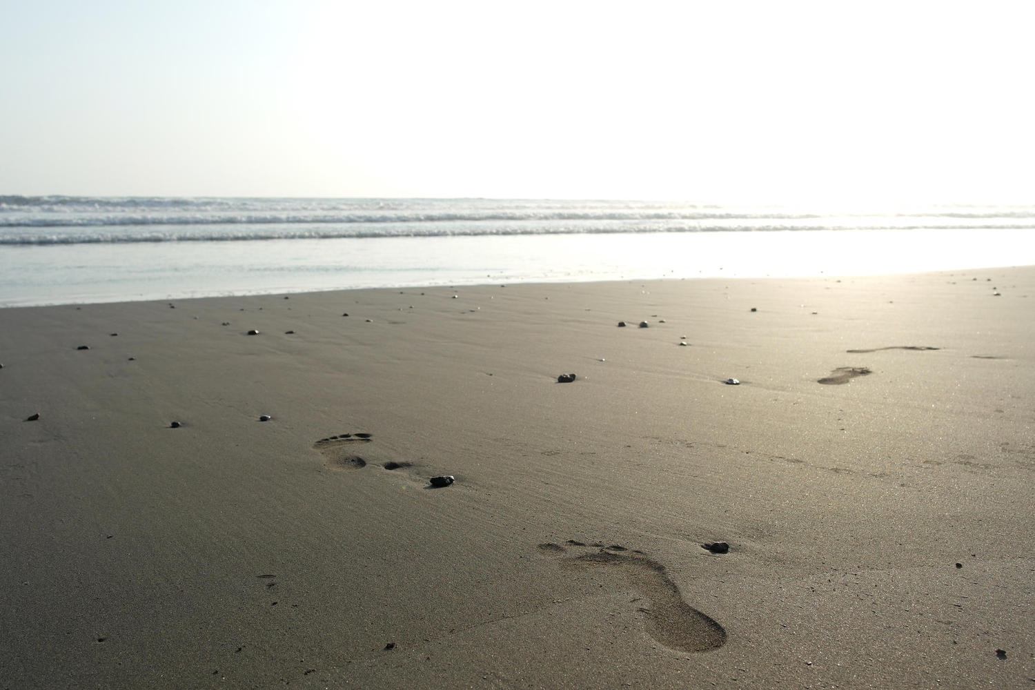 Footprints on Ostional beach, Nicoya Peninsula
