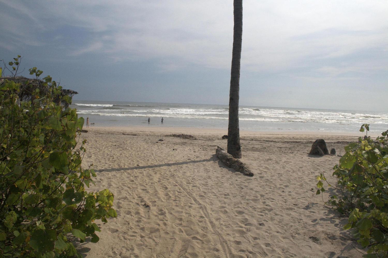 The beach at Nosara, Costa Rica