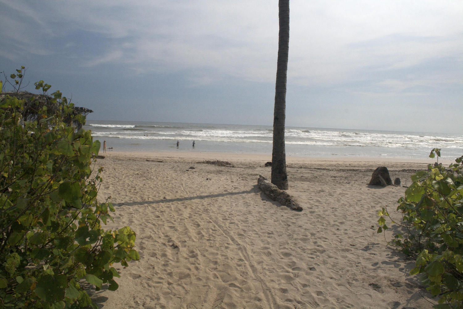 The beach at Nosara, Costa Rica