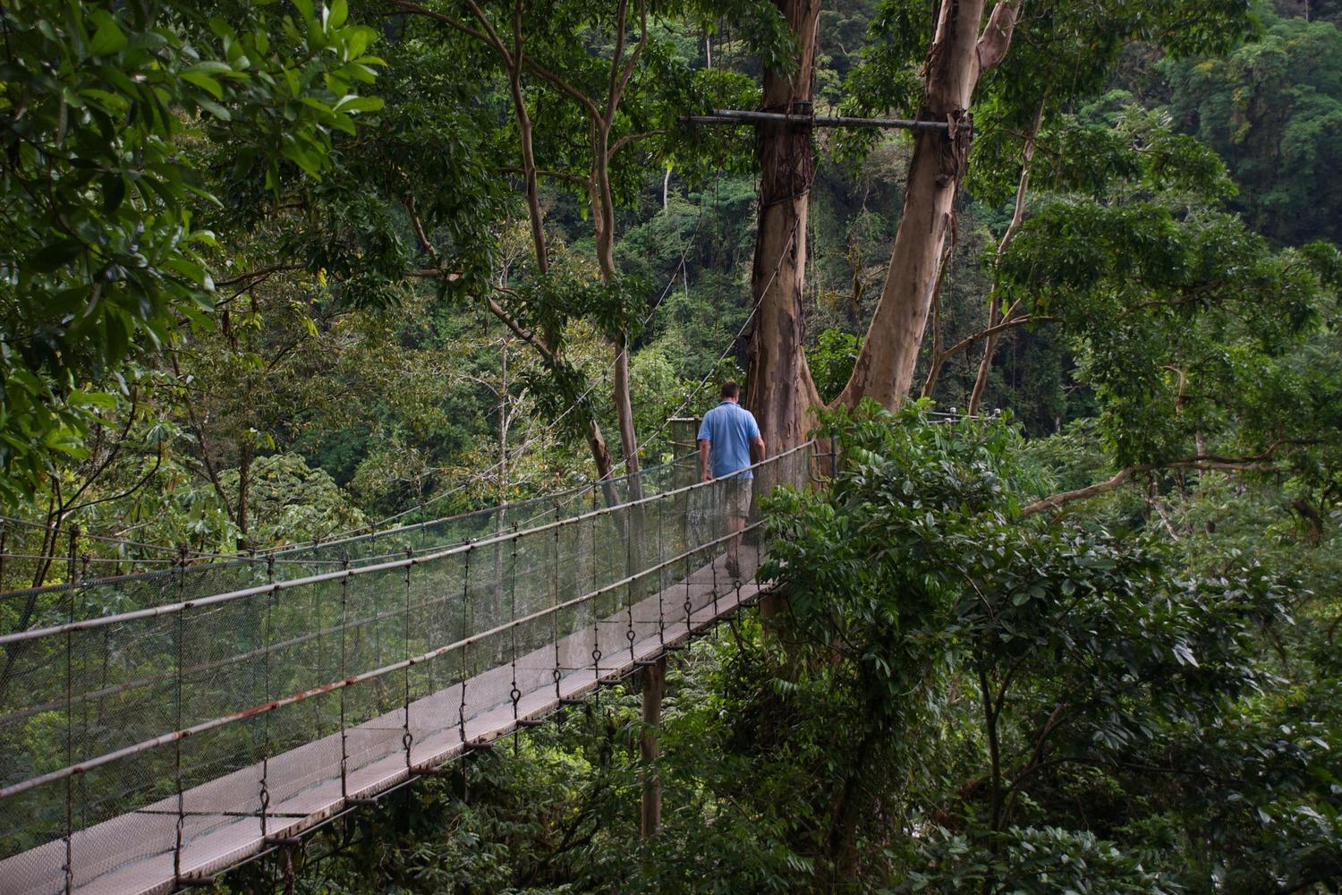 The canopy walkway at the Pacuare Lodge, Costa Rica