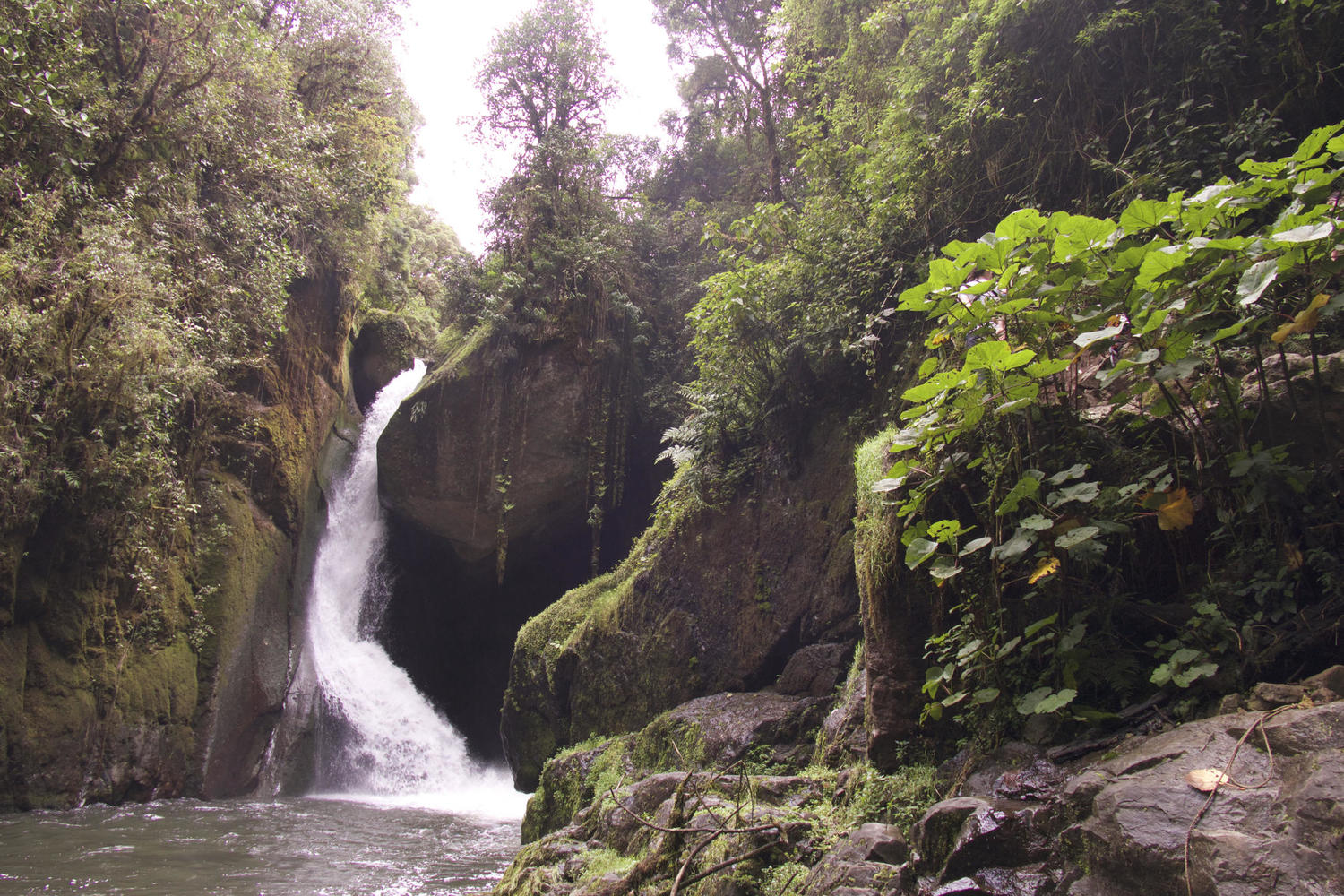 The lovely Savegre waterfall in the San Gerardo cloudfores