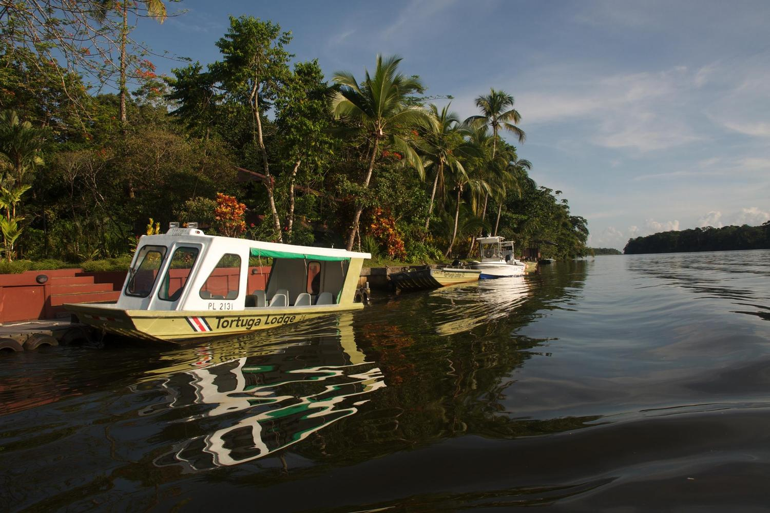 Navigating the wildlife rich waterways of Tortuguero