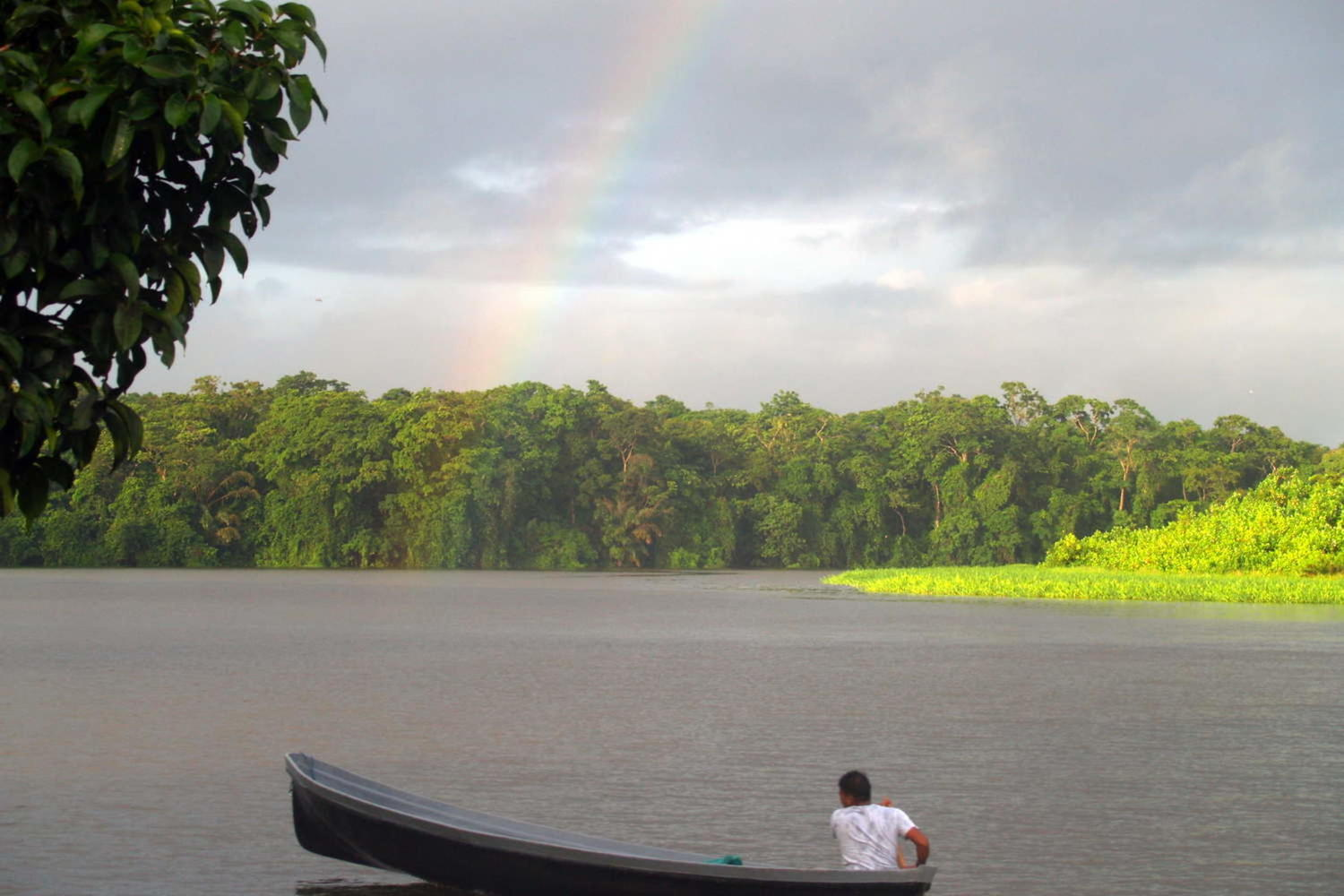 Looking south west along main channel from the public dock in Tortuguero
