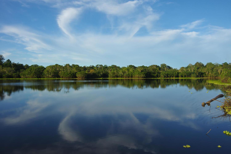 Lake view from Eden Lodge in Ecuadorian Amazon