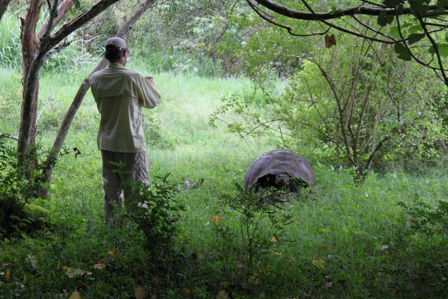 ecuador-galapagos-islands-guide-photographing-giant-tortoise