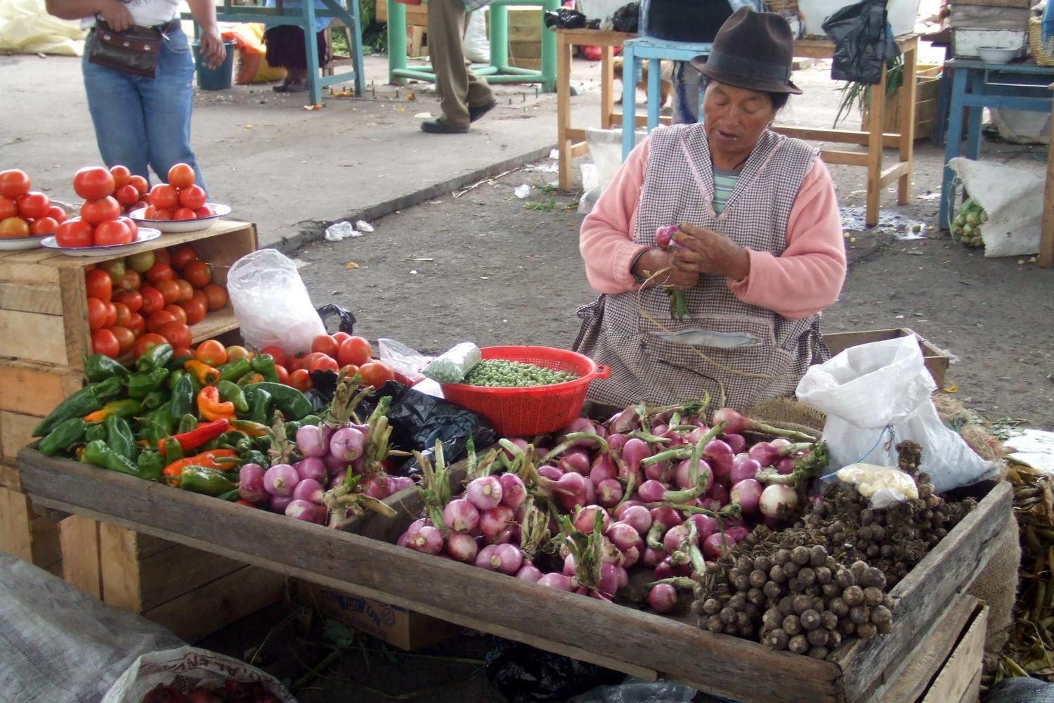 Lady selling leeks at the Saquisili market south of Quito