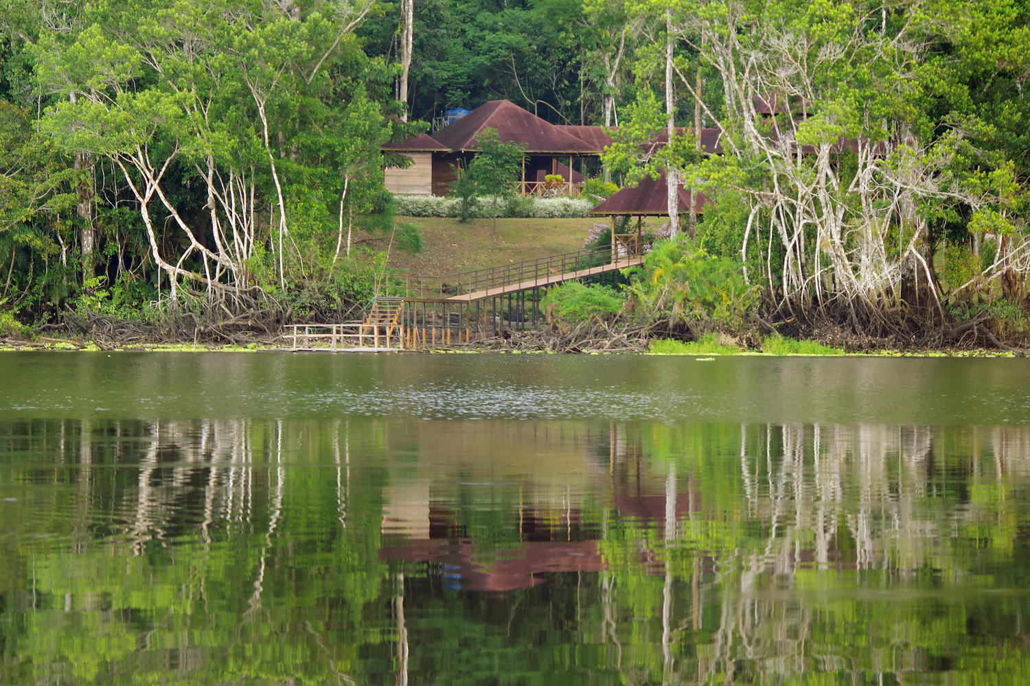 View of cabins from lake at Eden Lodge in Ecuadorian Amazon
