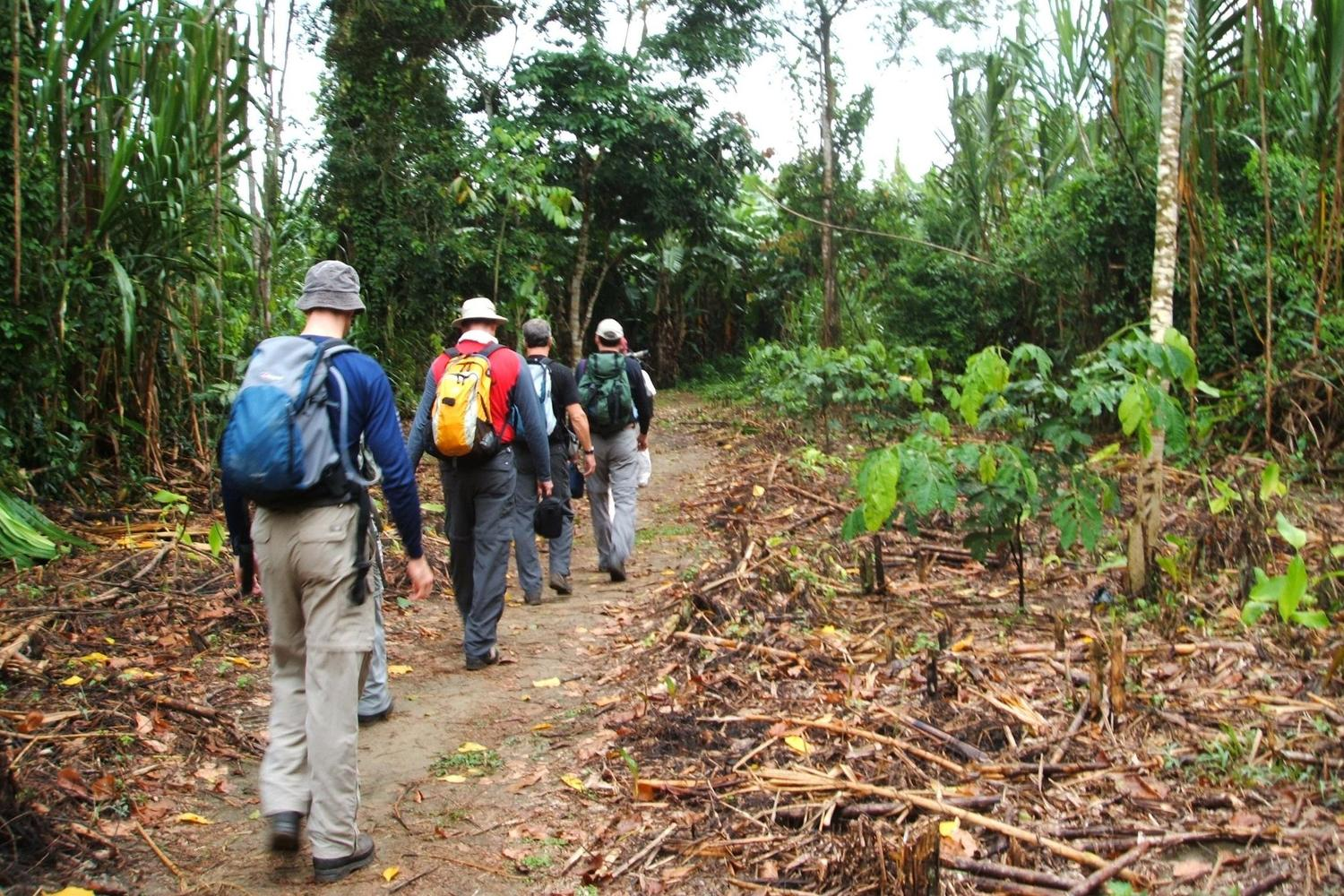 Walking to see wildlife in the Peruvian Amazon