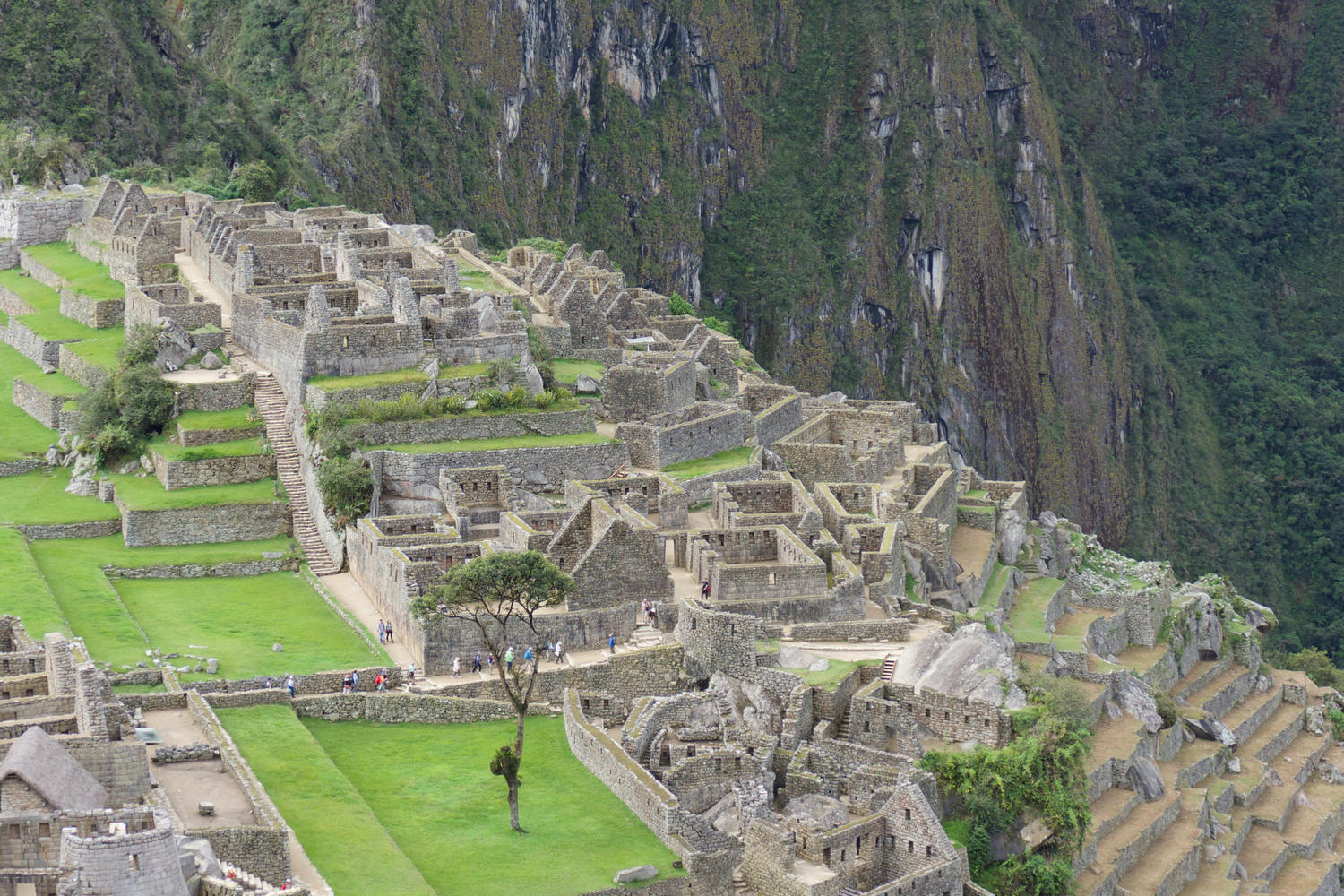 The intricate maze of temples, houses, stairways and plazas at Machu Picchu