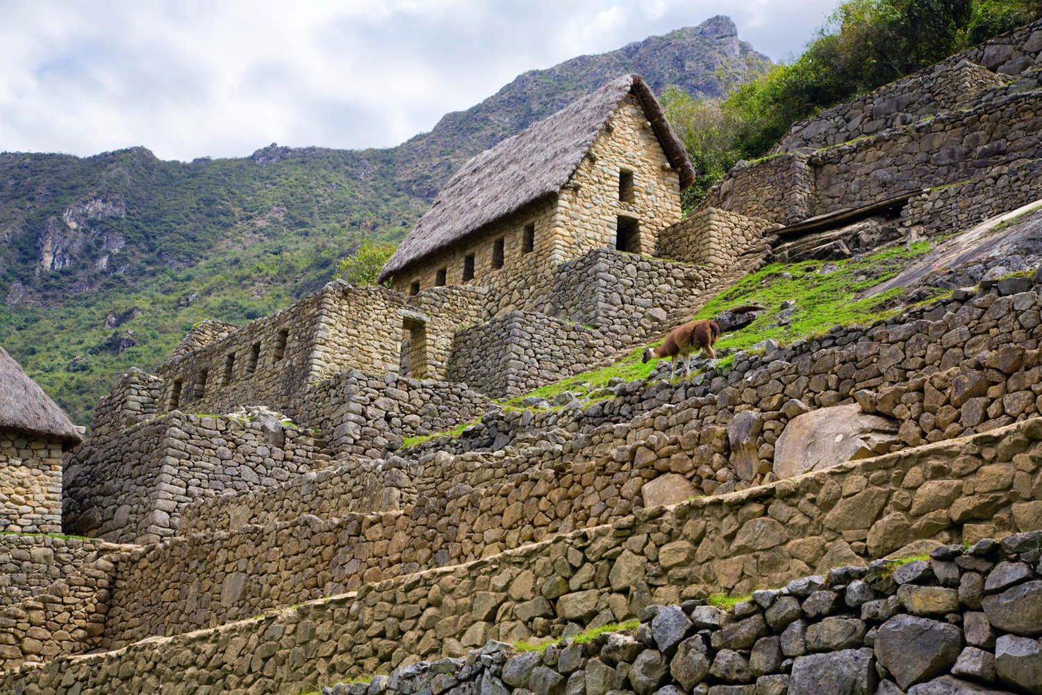 Inca house at Machu Picchu archaeological site